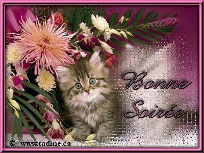 http://marieaudrey013.m.a.pic.centerblog.net/s1zbn6h4.jpg